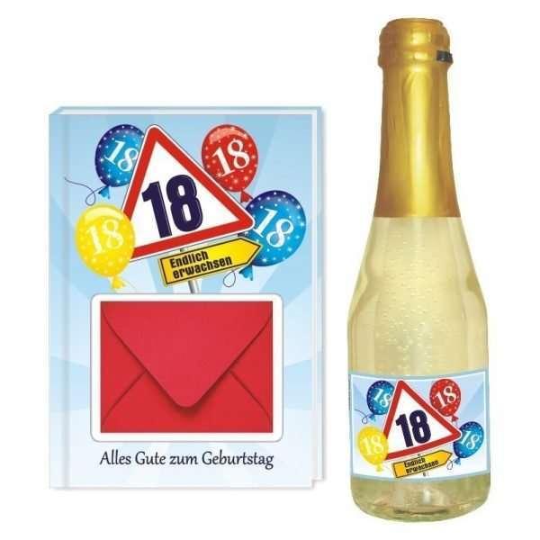 20133 Geldgeschenk zum 18 Geburtstag Geschenkset mit Piccolo Beerenperlwein und Geldgeschenkbuch mit Umschlag für Geldscheine, Gutscheine als Geburtstagsgeschenk einzeln