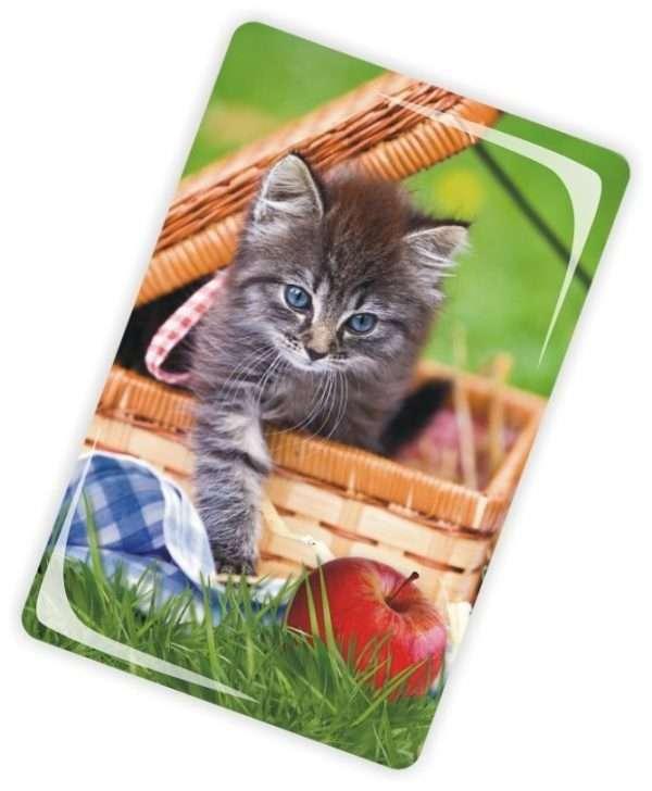 Die Glückwunschkarte zum Geburtstag mit Magnet und Umschlag Katze im Korb