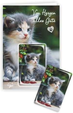 24064 Die Glückwunschkarte zum Geburtstag mit Magnet und Umschlag Katze im Garten