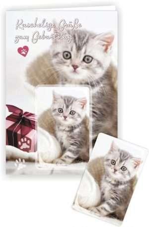 Die Glückwunschkarte zum Geburtstag mit Magnet und Umschlag Katze auf Kuscheldecke