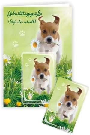 Die Glückwunschkarte zum Geburtstag mit Magnet und Umschlag Hund Geburtstagsgrüße