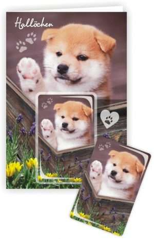 Die Glückwunschkarte zum Geburtstag mit Magnet und Umschlag Hund Hallöchen