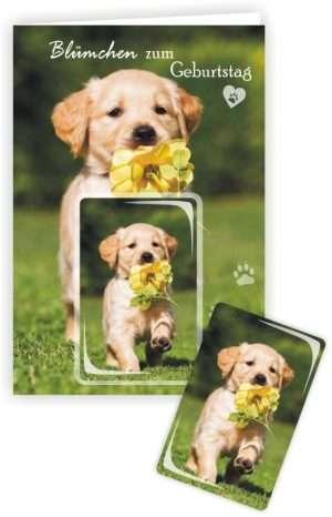 Die Glückwunschkarte zum Geburtstag mit Magnet und Umschlag Hund Blümchen