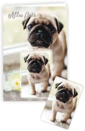 Die Glückwunschkarte zum Geburtstag mit Magnet und Umschlag Hund Alles Gute