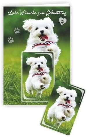 Die Glückwunschkarte zum Geburtstag mit Magnet und Umschlag Hund Liebe Wünsche