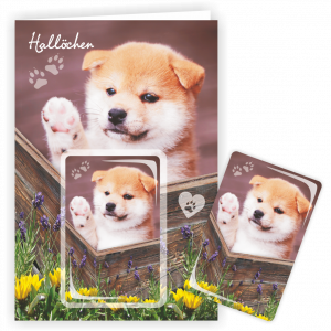Geschenkkarte-Magnet-Glueckwunschkarte-Magnetkarte-Halloechen-AV-Andrea-Verlag-andrea-geschenke.de