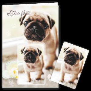 Geschenkkarte-Magnet-Glueckwunschkarte-Magnetkarte-Hund-Alles-Gute-AV-Andrea-Verlag-andrea-geschenke.de