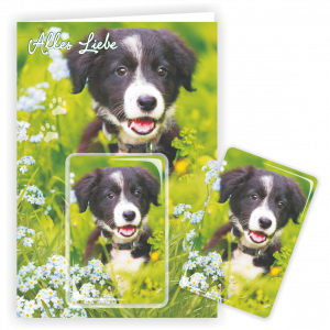 Geschenkkarte-Magnet-Glueckwunschkarte-Magnetkarte-Hund-Alles-Liebe-AV-Andrea-Verlag-andrea-geschenke.de