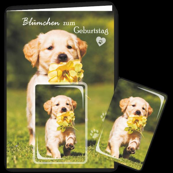 Geschenkkarte-Magnet-Glueckwunschkarte-Magnetkarte-Hund-Bluemchen-AV-Andrea-Verlag-andrea-geschenke.de