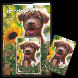 Geschenkkarte-Magnet-Glueckwunschkarte-Magnetkarte-Hund-Sonnige-Gruesse-AV-Andrea-Verlag-andrea-geschenke.de