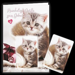 Geschenkkarte-Magnet-Glueckwunschkarte-Magnetkarte-Katze-Decke-AV-Andrea-Verlag-andrea-geschenke.de