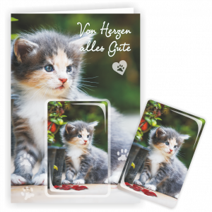 Geschenkkarte-Magnet-Glueckwunschkarte-Magnetkarte-Katze-Garten-AV-Andrea-Verlag-andrea-geschenke.de