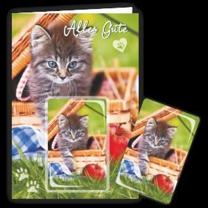 Geschenkkarte-Magnet-Glueckwunschkarte-Magnetkarte-Katze-Korb-AV-Andrea-Verlag-andrea-geschenke.de