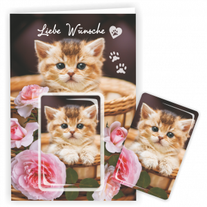 Geschenkkarte-Magnet-Glueckwunschkarte-Magnetkarte-Katze-Rosen-AV-Andrea-Verlag-andrea-geschenke.de