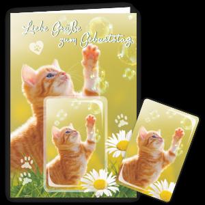 Geschenkkarte-Magnet-Glueckwunschkarte-Magnetkarte-Katze-Seifenblasen-AV-Andrea-Verlag-andrea-geschenke.de