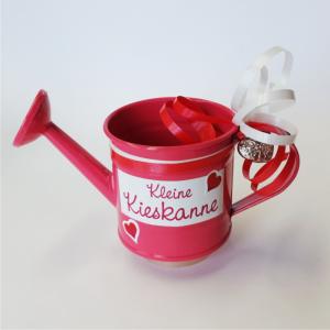 Kieskanne-Geldkanne-Giesskanne-Metallkanne-Gartenkanne-rosa-AV-Andrea-Verlag-andrea-geschenke.de
