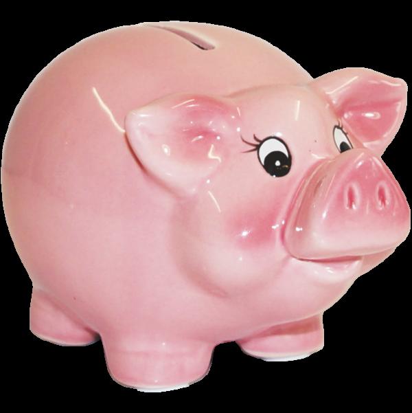 Sparschwein-Spardose-Schwein-rosa-Schwein-Geldgeschenk-AV-Andrea-Verlag-andrea-geschenke.de